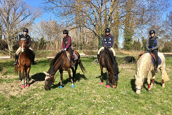 Horseback Riding in Avignon